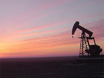 Нефти предсказано