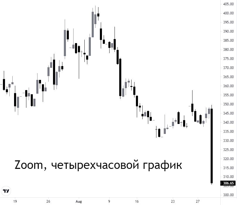 Акции Zoom упали на 12% несмотря на хороший отчет. В чем причина