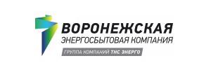 Акции ТНС энерго Воронеж