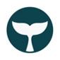 Beluga Pay ICO (BBI) -