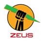 Zeus ICO (ZEUS) - Отзывы