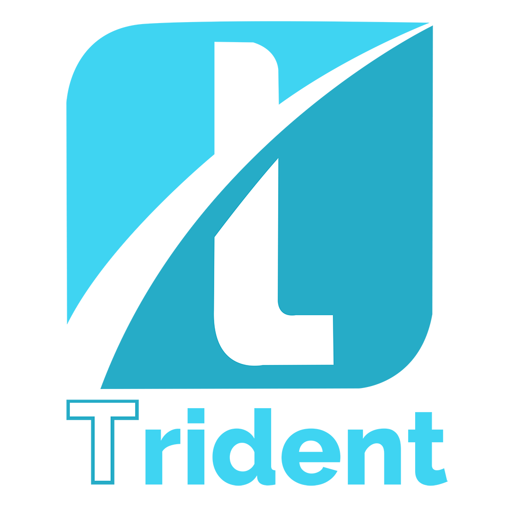 trident coin ICO (TDC) -