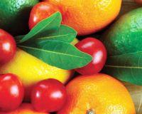 Ввоз фруктов из южных