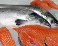 Вылов рыбы в России