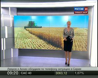 Цены на пшеницу в РФ