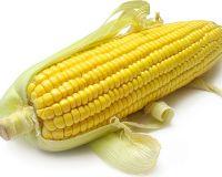 Мировые цены на кукурузу
