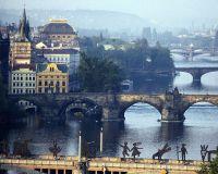 В Чехии отмечена