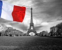 Индекс PMI Франции упал