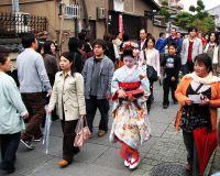 Туристический сектор