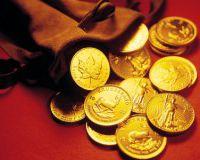 В США началась золотая