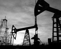 Цена на нефть выросла до