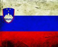 Словения может