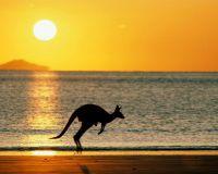 Австралийский рынок