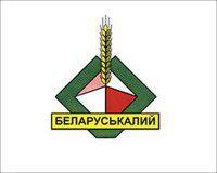 Белоруссия сократит