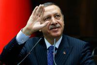 Эрдогана призывают уйти