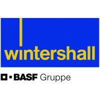 Wintershall: тема