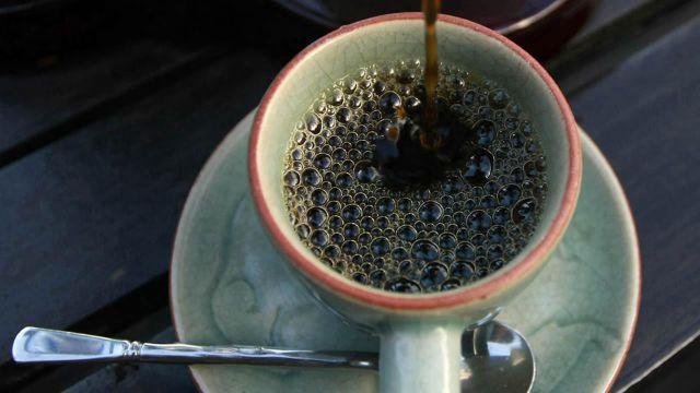 Чашка кофе может вырасти