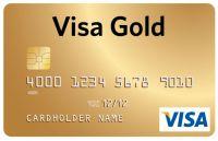 Минфин: Visa и