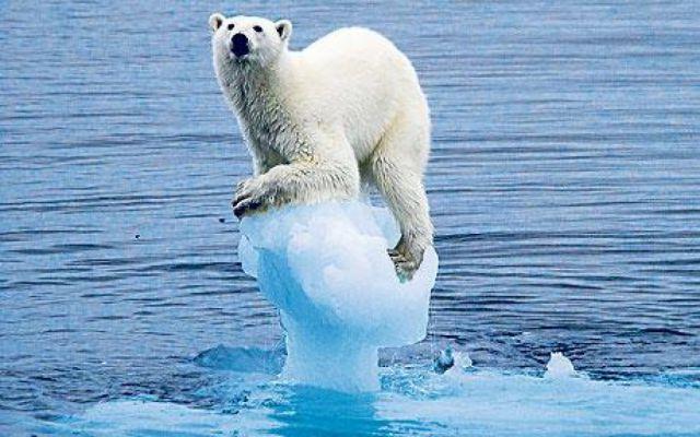 Изменение климата: когда