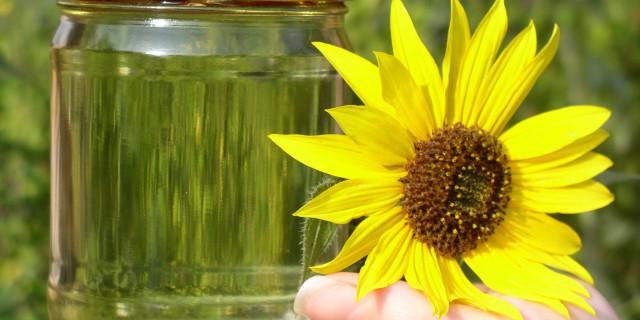 Почему биодизель не
