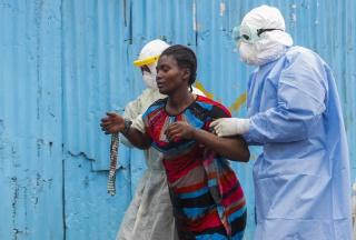 ВБ: Эбола приведет к