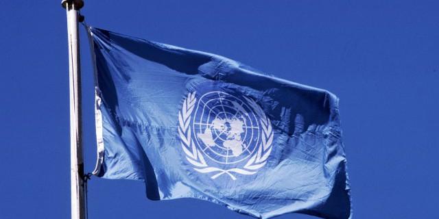ООН прогнозирует рост в