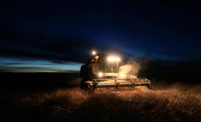 Биржевые цены на пшеницу