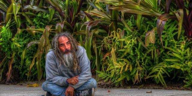 Гавайский  quot;рай
