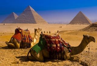 В магазинах Египта