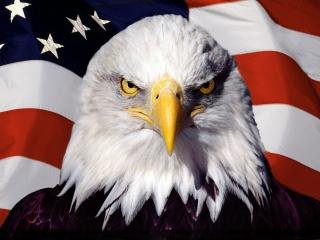 Опрос ВЦИОМ: США ведут