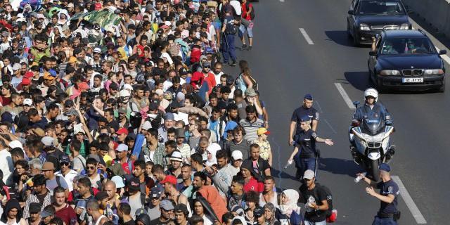 Вокруг мигрантов