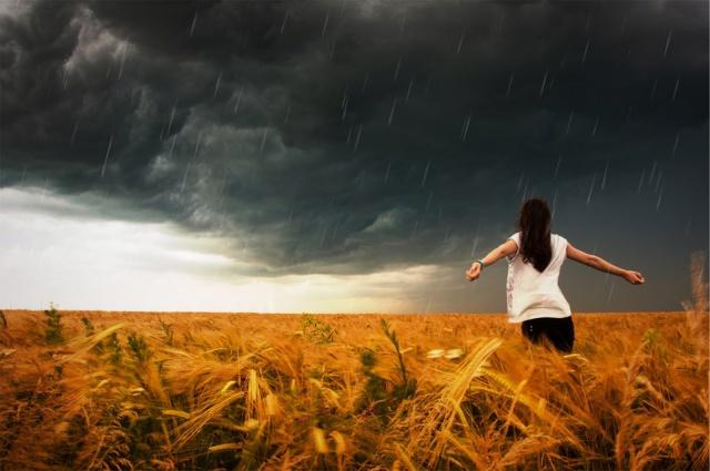 Перед идеальным штормом
