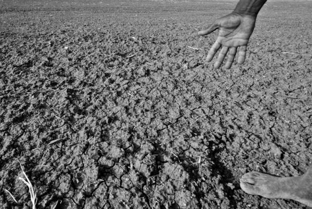 Водные ресурсы: мир на