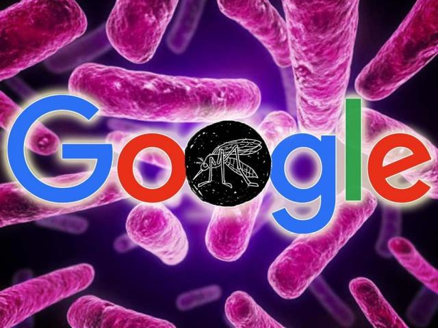 Google жертвует $1 млн