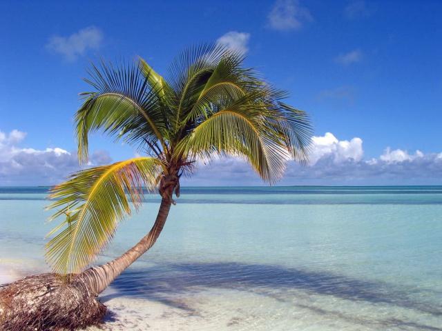 Маврикий отменил визы