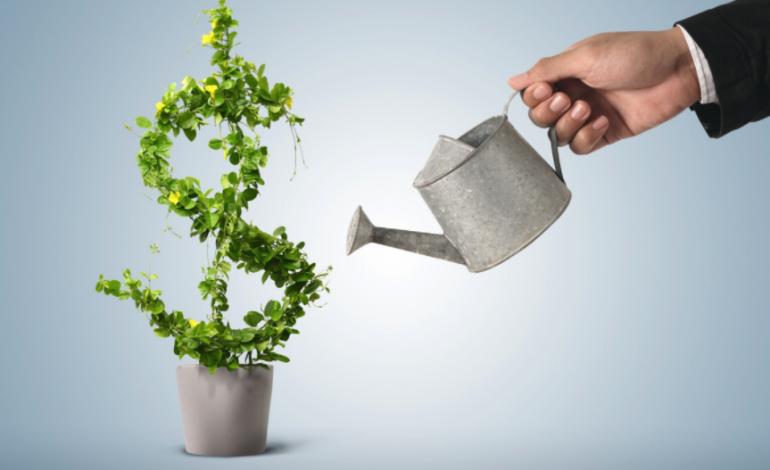 Чем отличаются обычные акции от привилегированных 2019