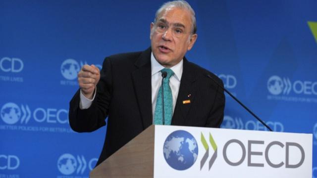 ОЭСР против санкций в
