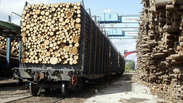 Вторую лесную биржу