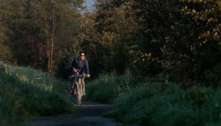 6 лучших велосипедных